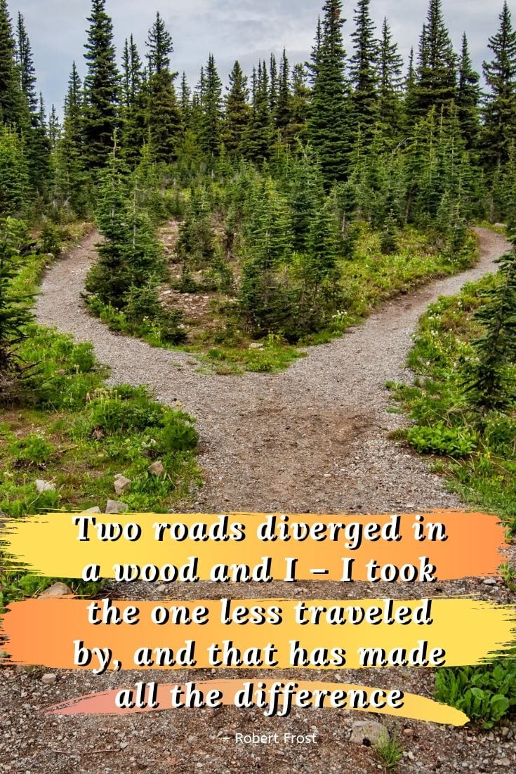 Two roads diverged in a wood and I – I took the one less traveled by, and that has made all the difference