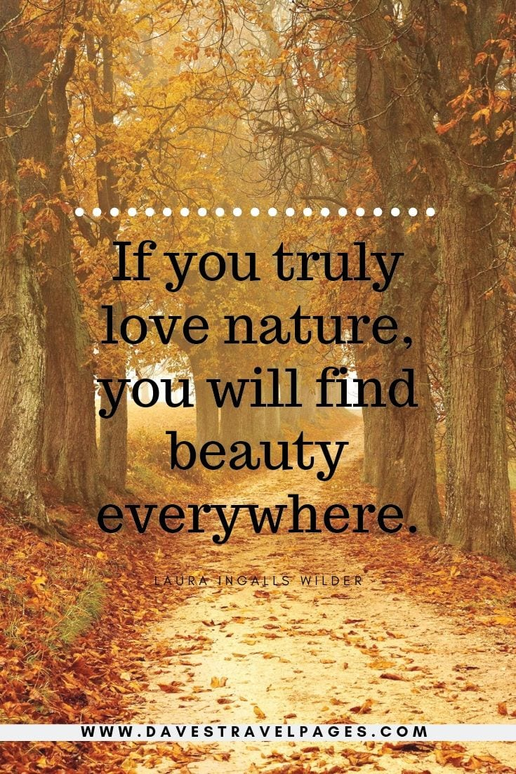 Nature Quotes - If you truly love nature, you will find beauty everywhere.