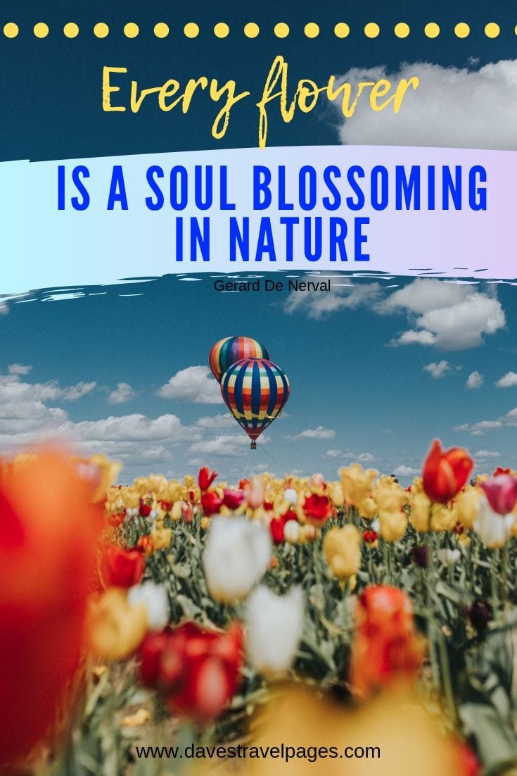 Nature and Outdoor Quotes - Every flower is a soul blossoming in nature.
