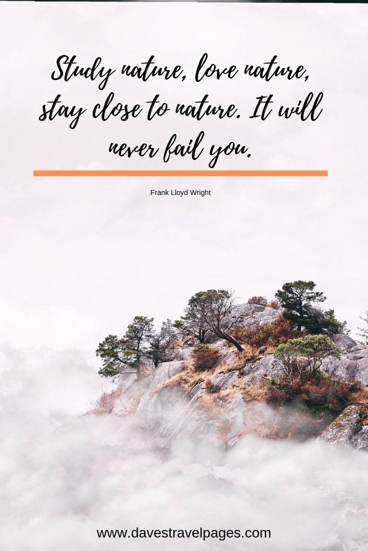 Outdoor quotations: Study nature, love nature, stay close to nature. It will never fail you.