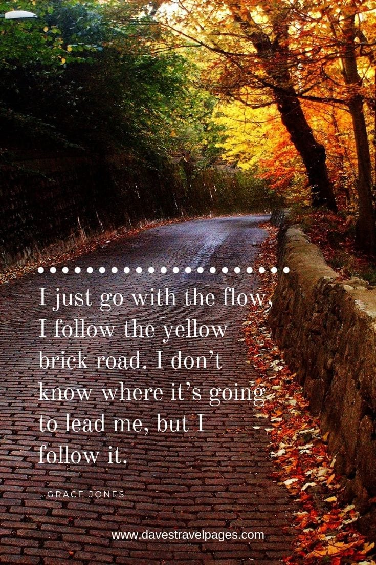 Funny road trip quotes: I just go with the flow, I follow the yellow brick road. I don't know where it's going to lead me, but I follow it.