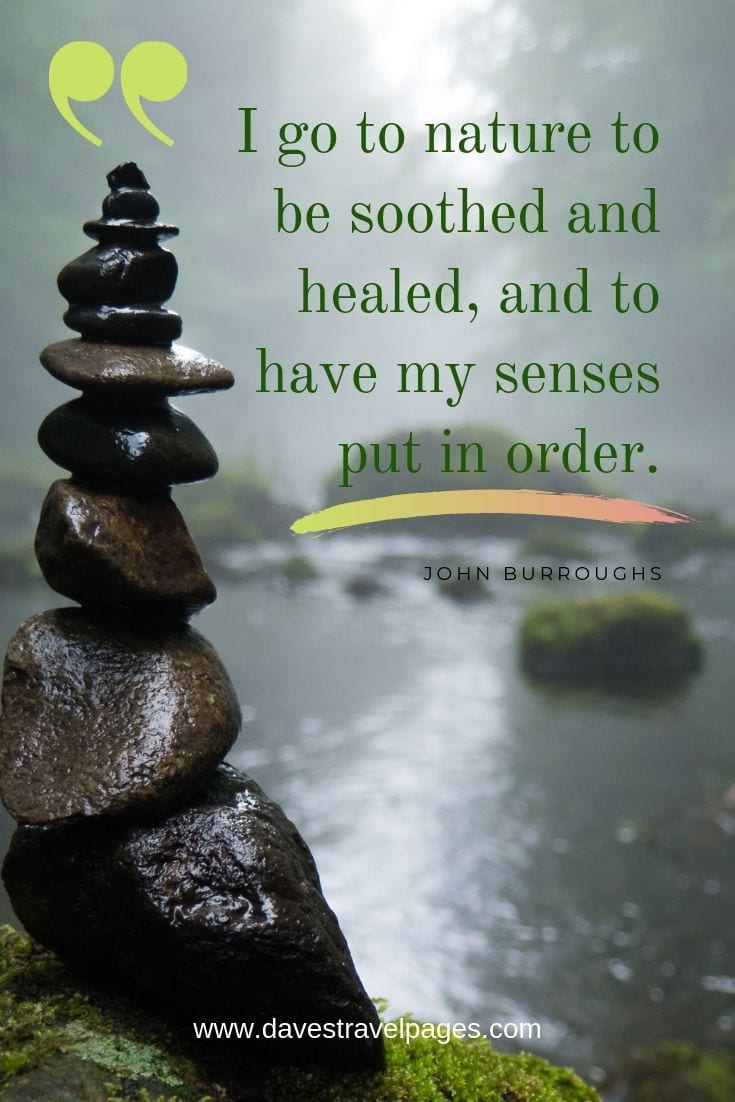 "Quotes about soothing nature - ""I go to nature to be soothed and healed, and to have my senses put in order."""