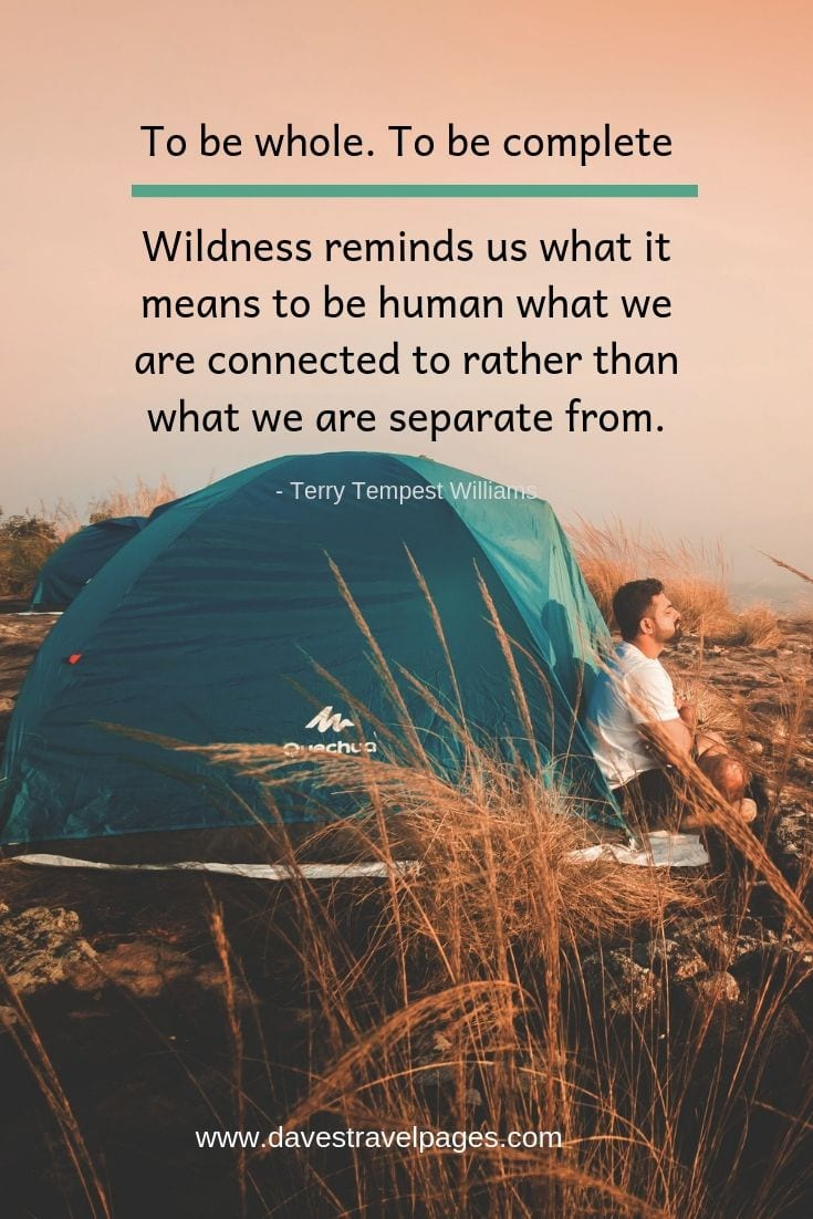 "Call of the Wild quotes - ""To be whole. To be complete. Wildness reminds us what it means to be human, what we are connected to rather than what we are separate from."""