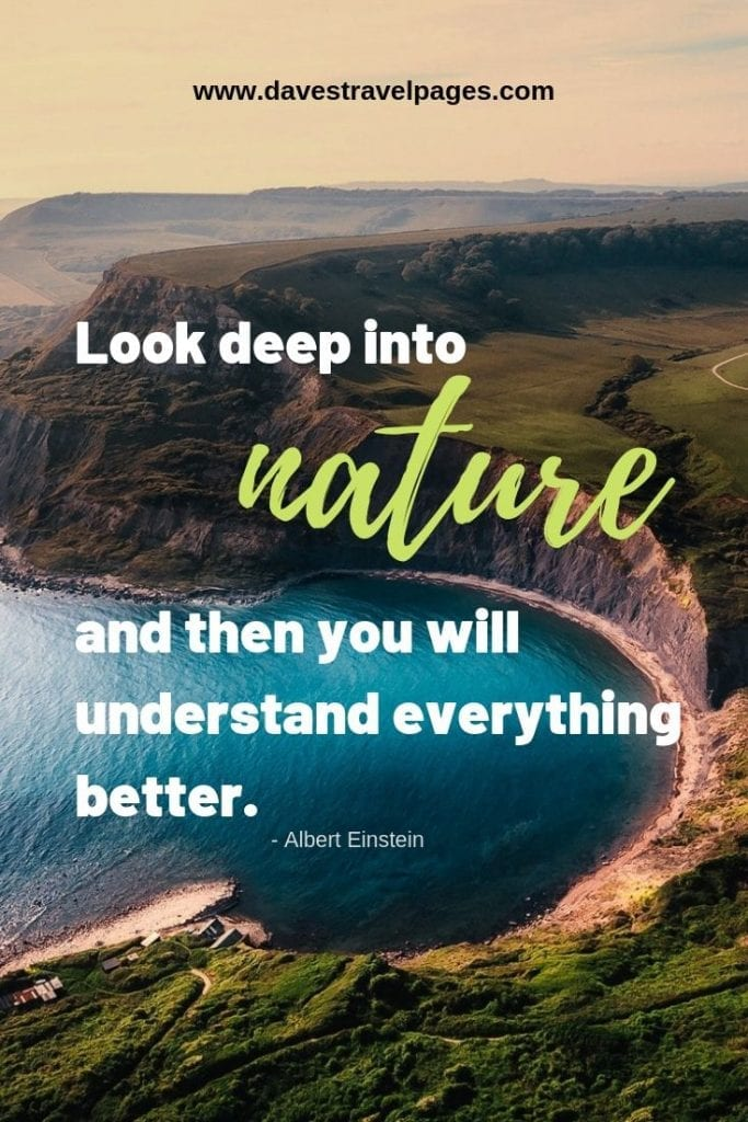 Look deep into nature, and then you will understand everything better. - Albert Einstein nature quote