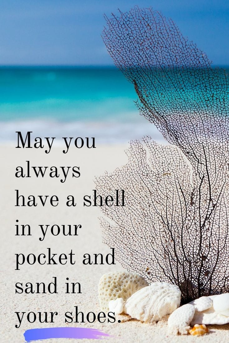 Funny beach quotes - May you always have a shell in your pocket and sand in your shoes.