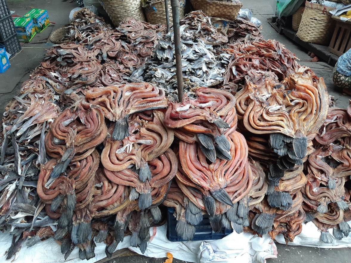 Strange dried food at the local market in Mandalay Myanmar