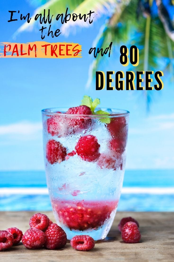 Beach Sayings - I'm all about the Palm Trees and 80 degrees