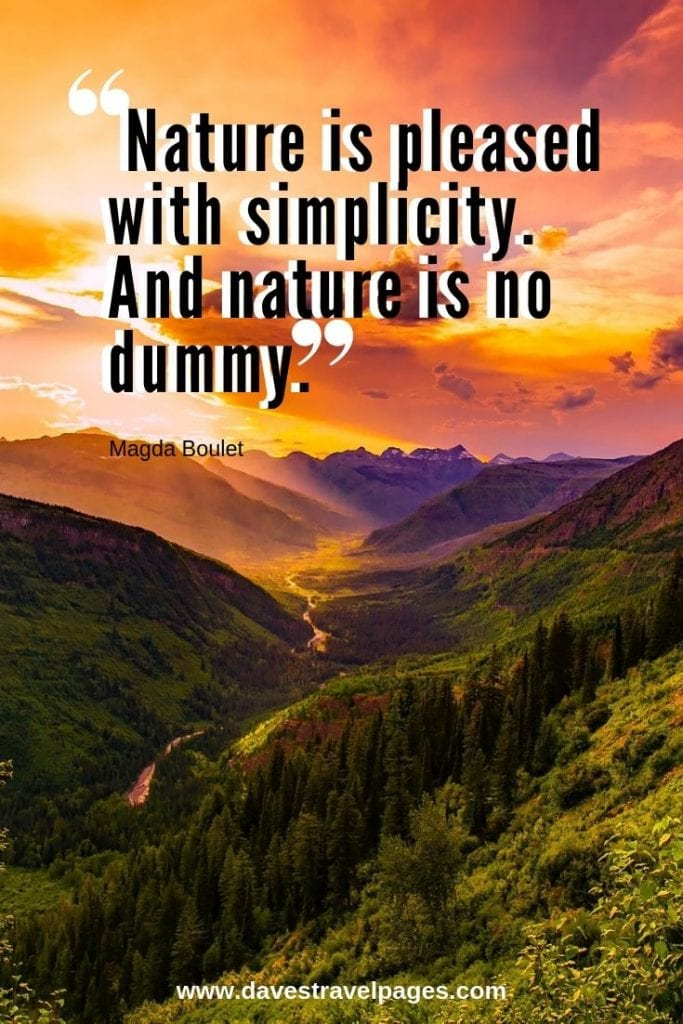"""Natural World Quotes: """"Nature is pleased with simplicity. And nature is no dummy."""" – Magda Boulet"""