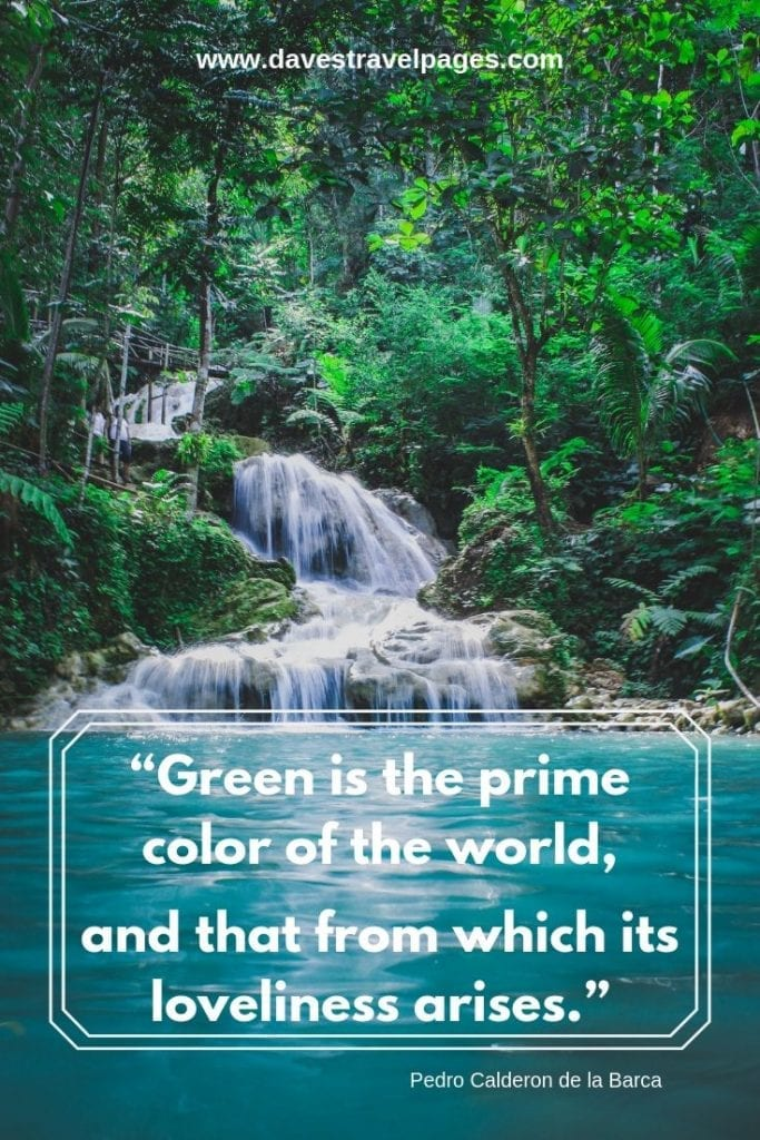 """Green Quotes: """"Green is the prime color of the world, and that from which its loveliness arises."""" – Pedro Calderon de la Barca"""