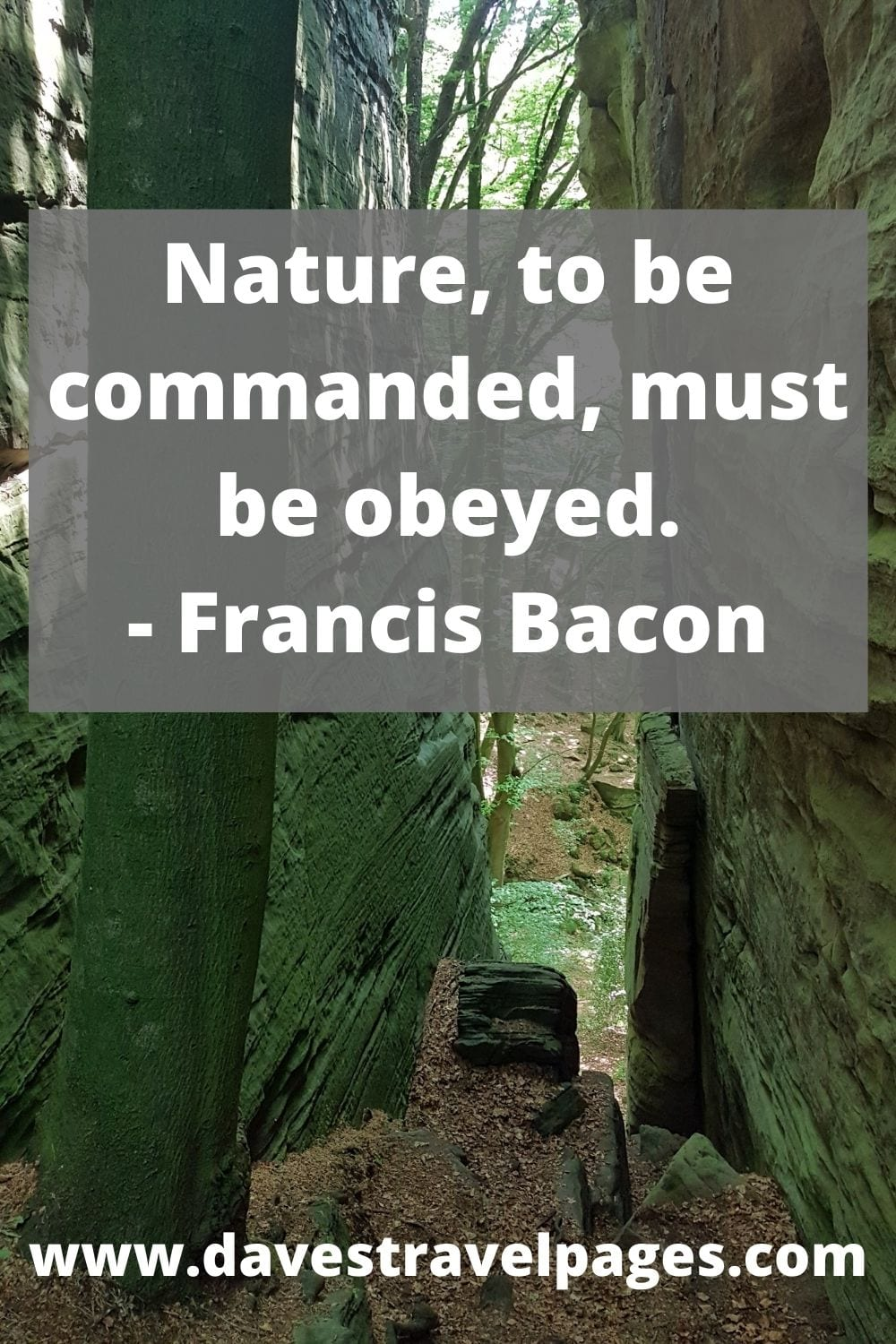 Nature, to be commanded, must be obeyed - Francis Bacon quote on nature