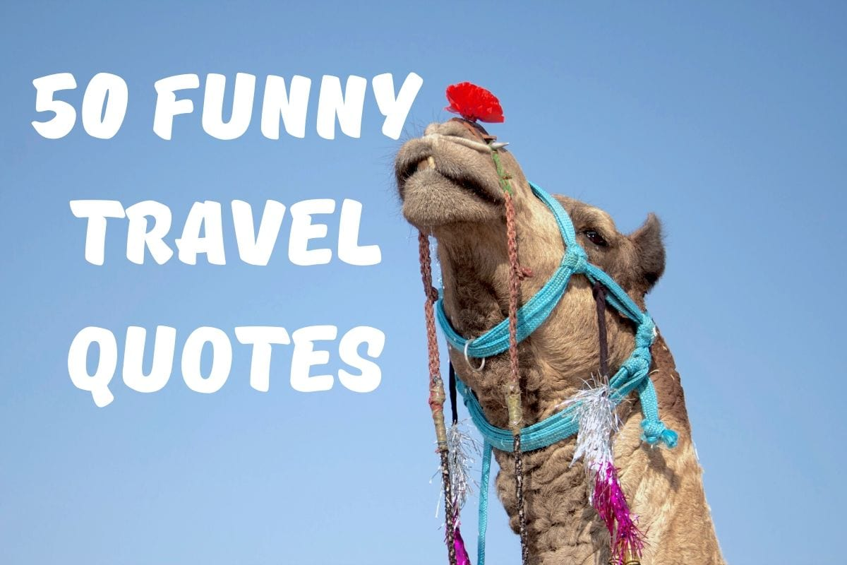 50 Funniest Travel Quotes