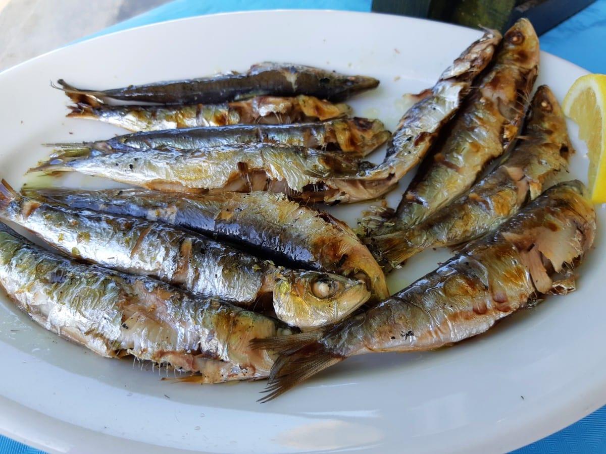 Sardines were a speciality in Porto Kagio, Mani