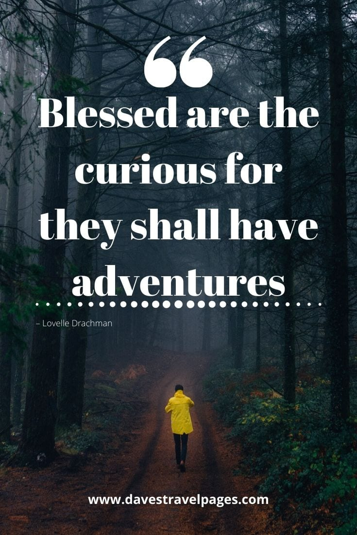"""Blessed are the curious for they shall have adventures."" – Lovelle Drachman"