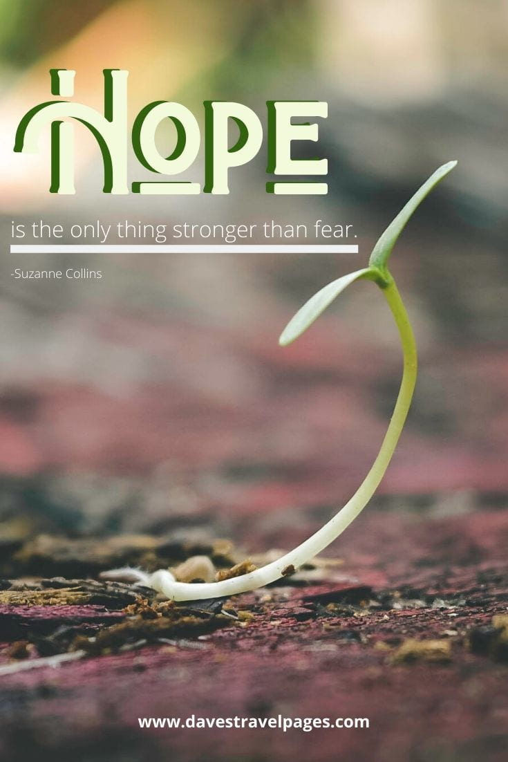 "44. ""Hope is the only thing stronger than fear."" - Suzanne Collins"