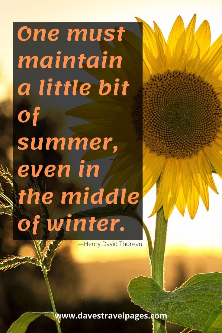 "Summer and winter quotes - ""One must maintain a little bit of summer, even in the middle of winter."" —Henry David Thoreau"