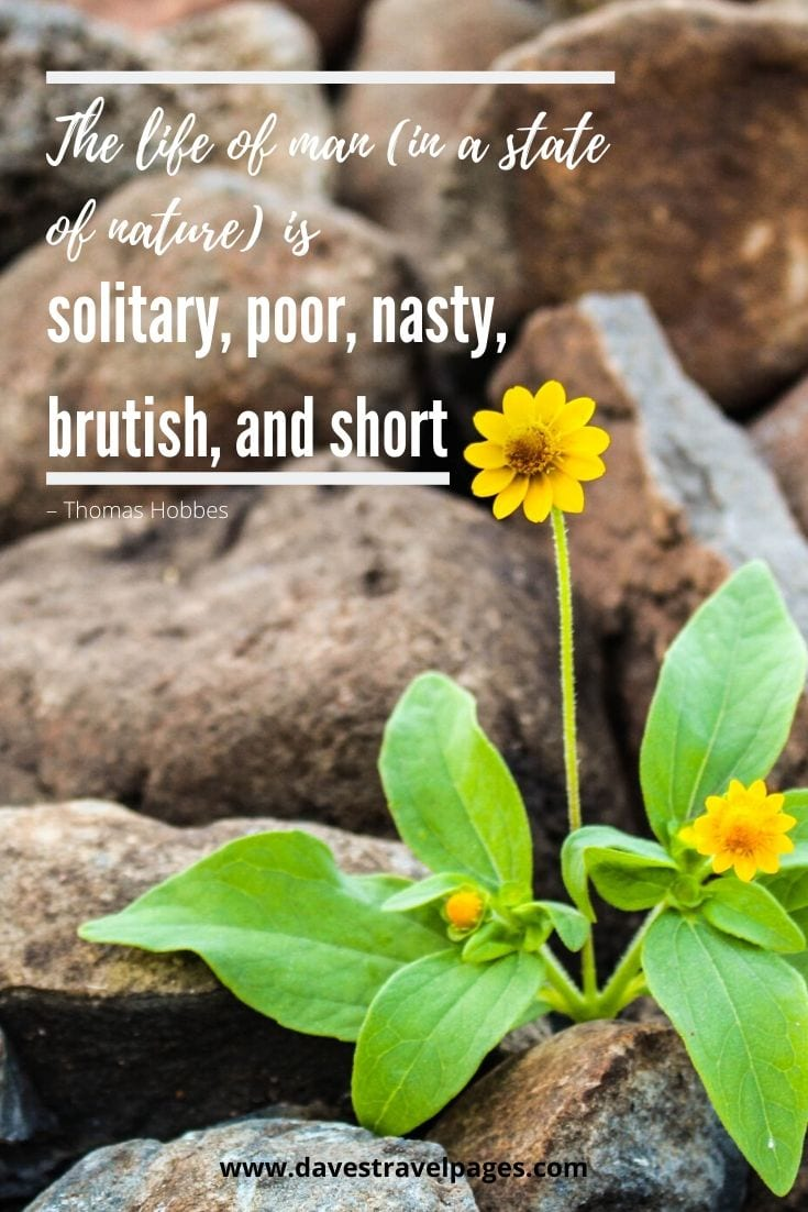 "Philosophy Quotes about life: ""The life of man (in a state of nature) is solitary, poor, nasty, brutish, and short"" – Thomas Hobbes"