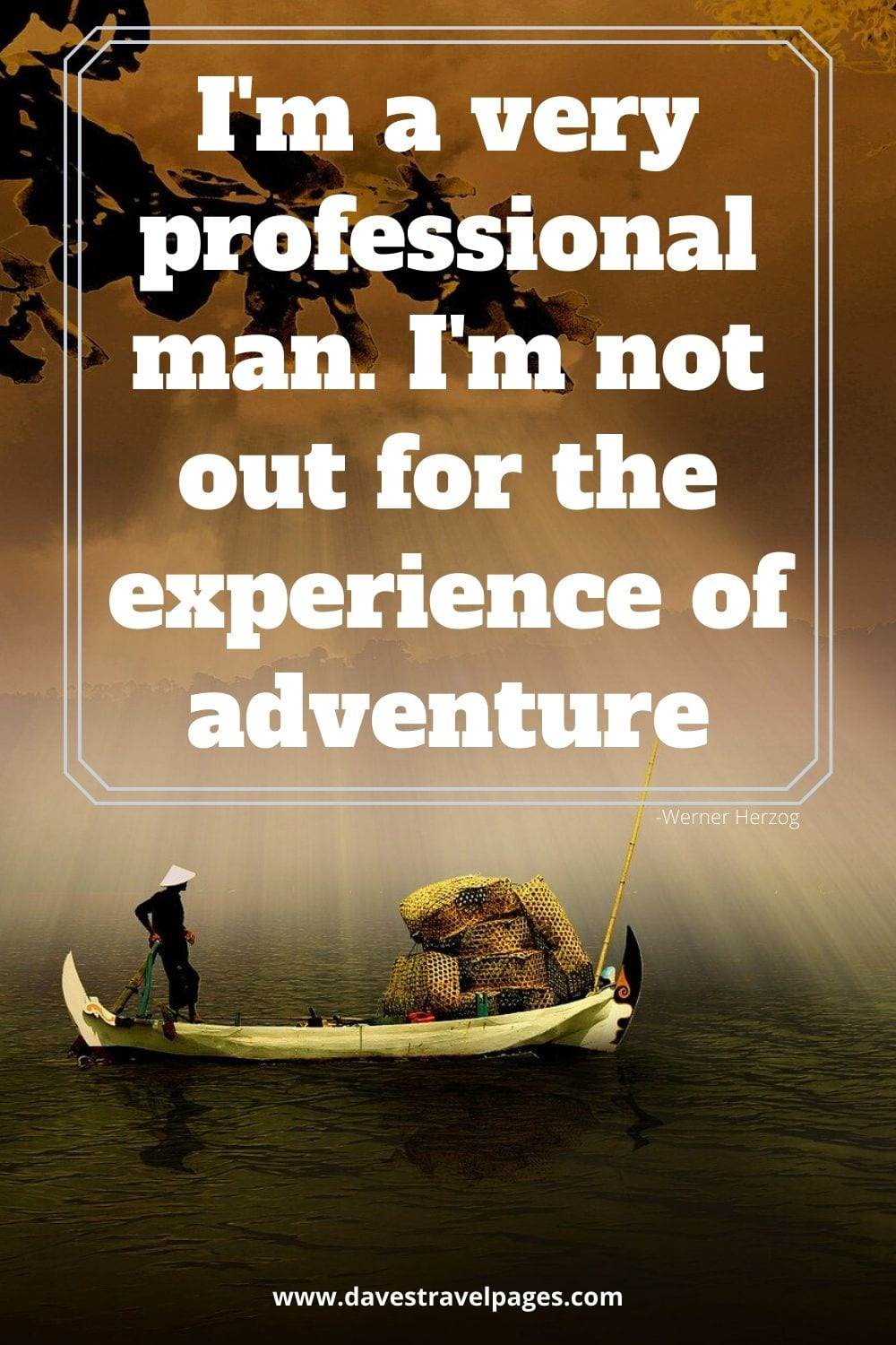 I'm a very professional man. I'm not out for the experience of adventure. Werner Herzog