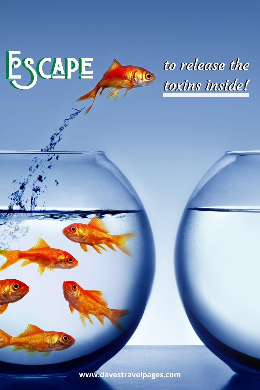 Escape to release the toxins inside!