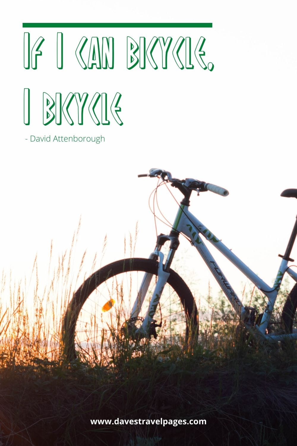 Cycling quotes - If I can bicycle, I bicycle. David Attenborough