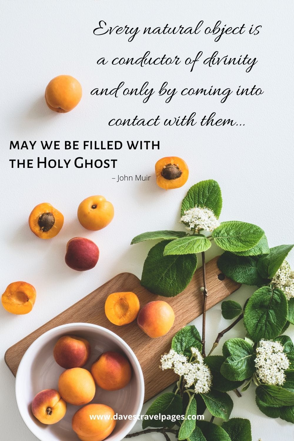 """Nature quotes by John Muir - """"Every natural object is a conductor of divinity and only by coming into contact with them… may we be filled with the Holy Ghost."""""""