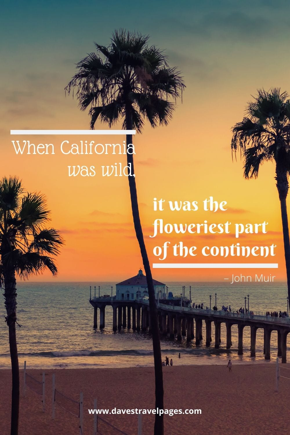 """""""When California was wild, it was the floweriest part of the continent."""" – John Muir"""