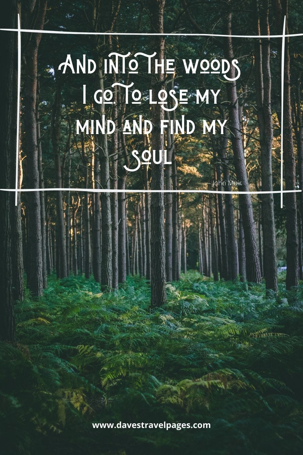 """Famous John Muir Quotes: """"And into the woods I go, to lose my mind and find my soul.""""― John Muir"""