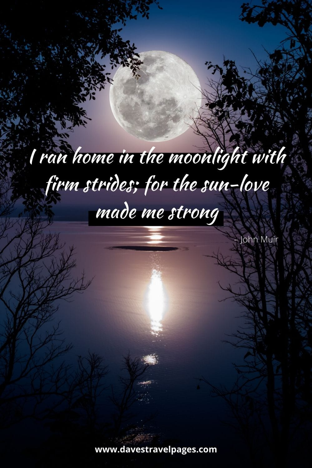 """""""I ran home in the moonlight with firm strides; for the sun-love made me strong."""" – John Muir Quote"""