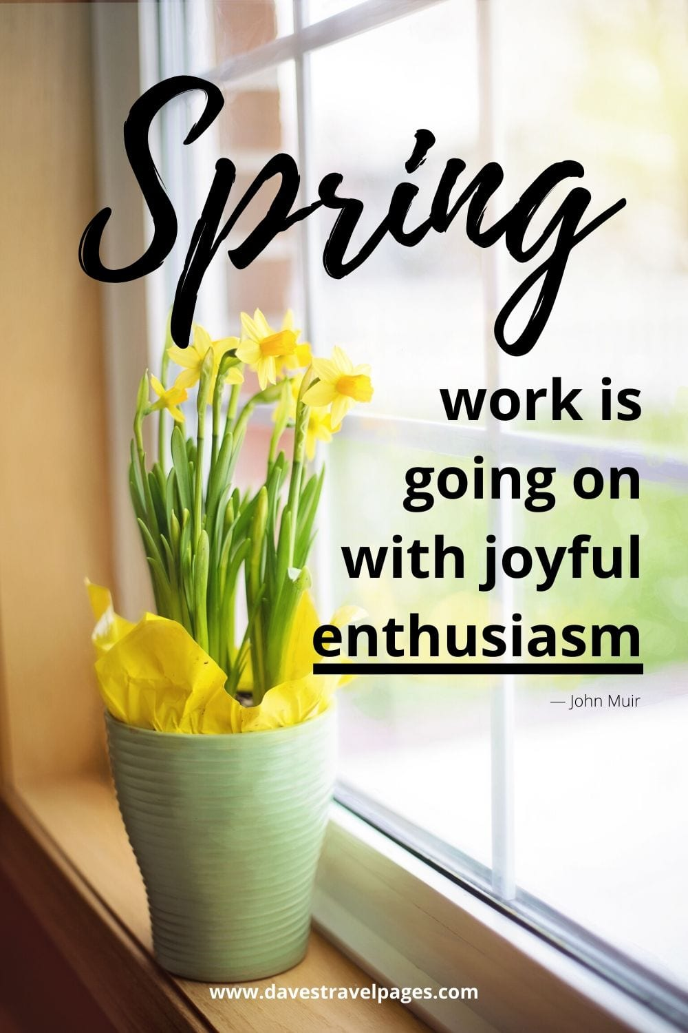 """John Muir Quotes: """"Spring work is going on with joyful enthusiasm."""""""