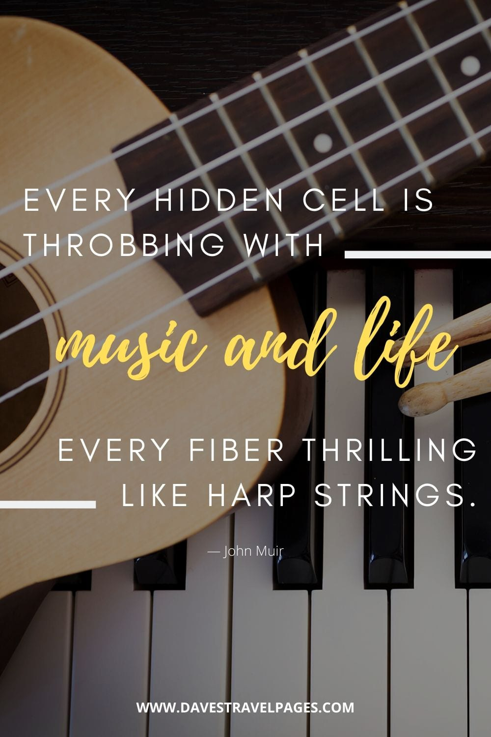 """""""Every hidden cell is throbbing with music and life, every fiber thrilling like harp strings.""""― John Muir"""