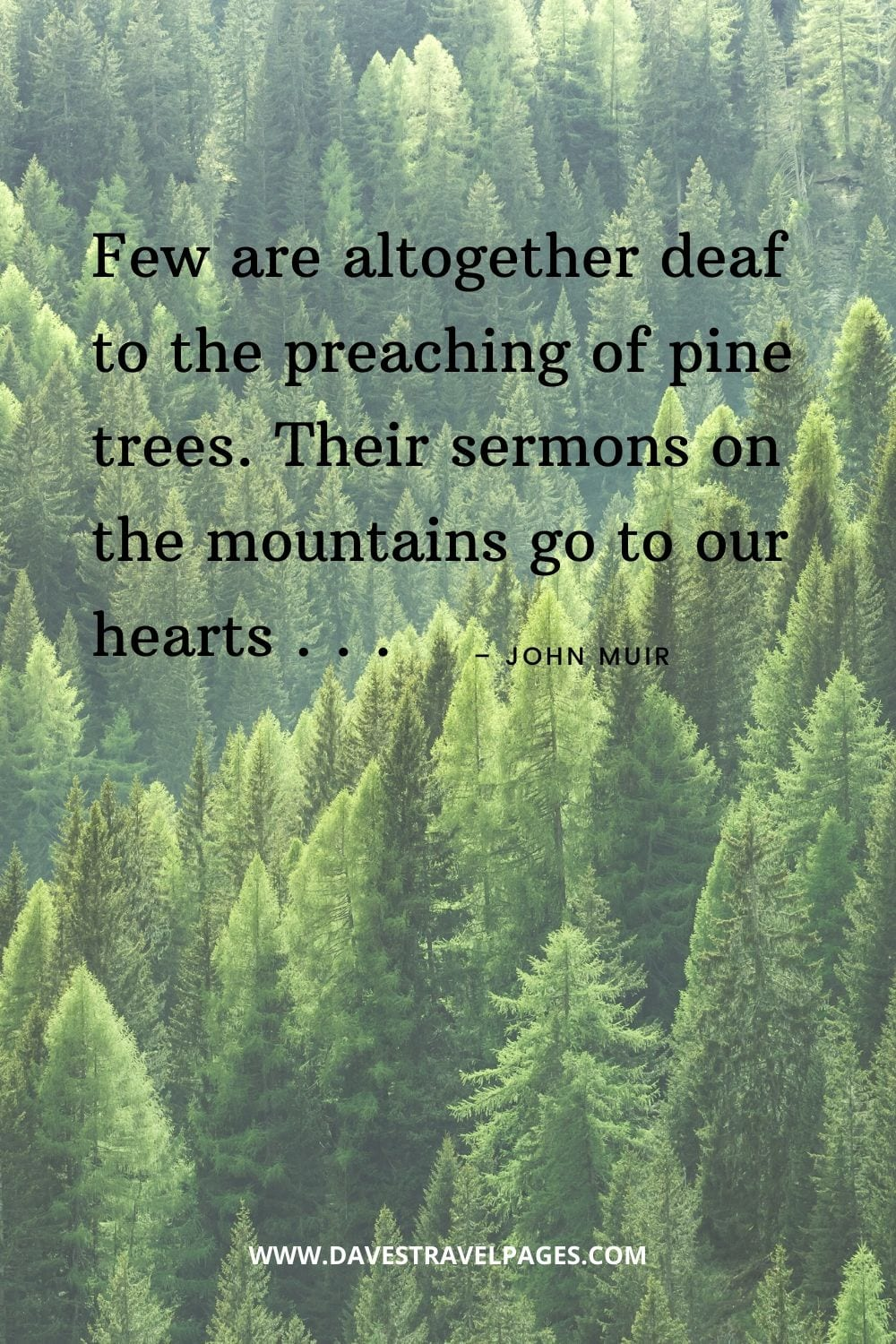 """""""Few are altogether deaf to the preaching of pine trees. Their sermons on the mountains go to our hearts . . ."""" – John Muir nature quotes"""