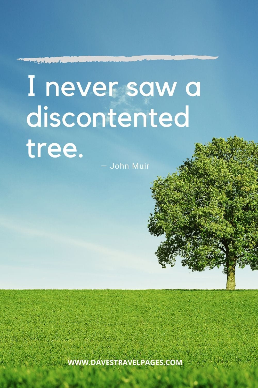 """I never saw a discontented tree.""― John Muir"