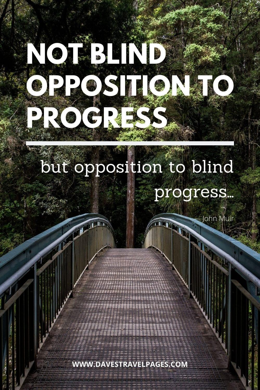 """""""Not blind opposition to progress, but opposition to blind progress…""""― John Muir"""