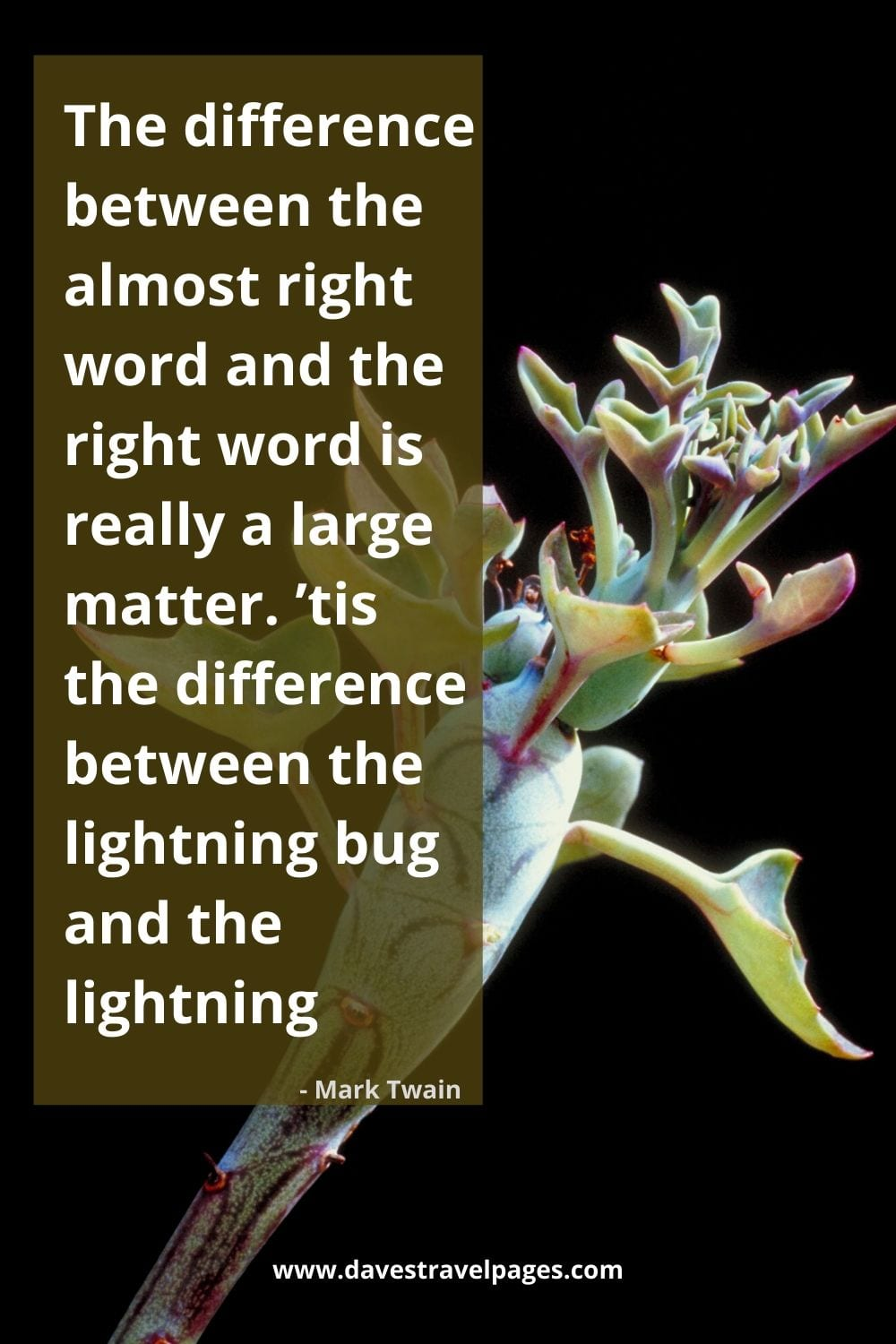 "Mark Twain Saying: ""The difference between the almost right word and the right word is really a large matter. 'tis the difference between the lightning bug and the lightning."""