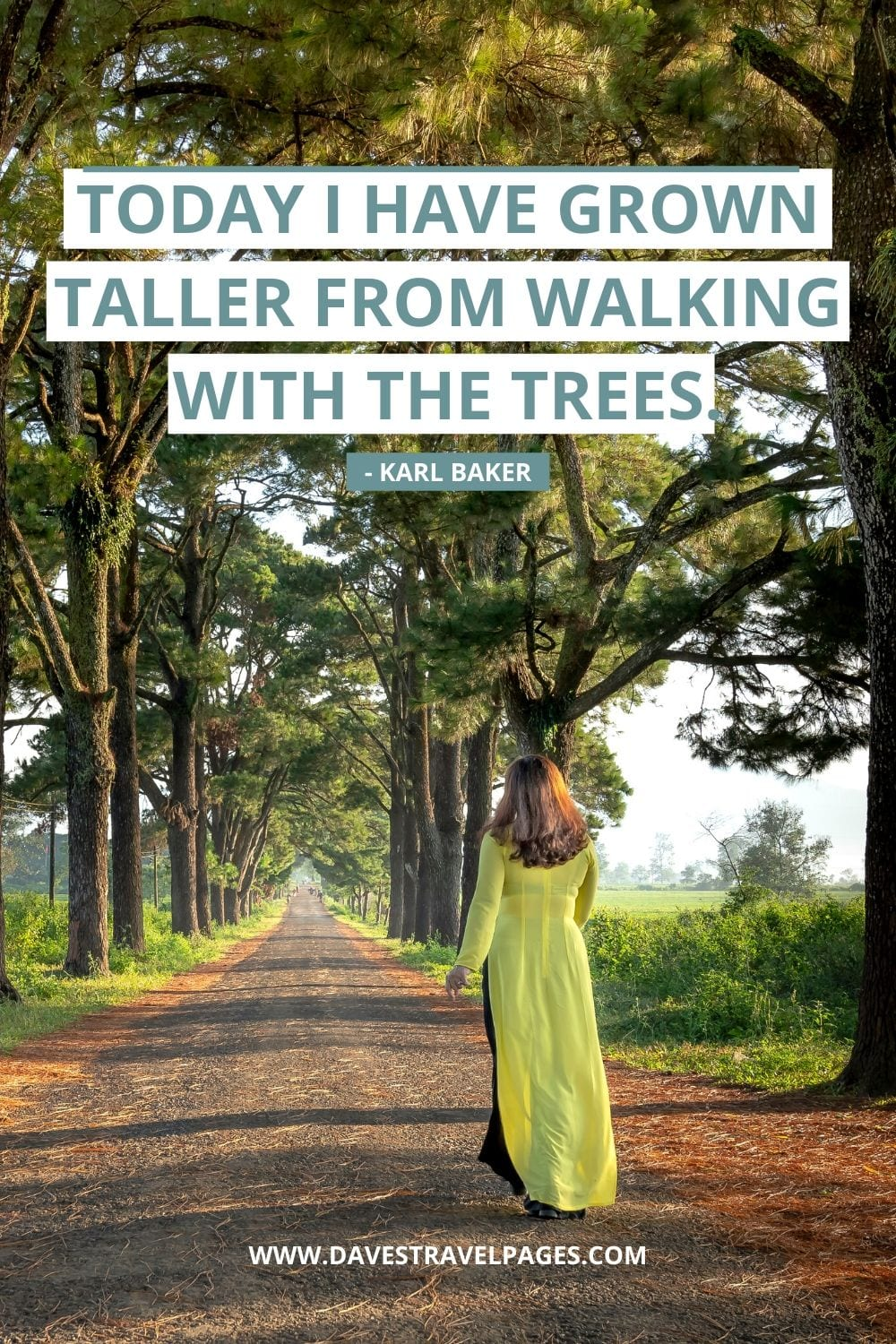 Nature Walking Quotes: Today I have grown taller from walking with the trees. - Karl Baker