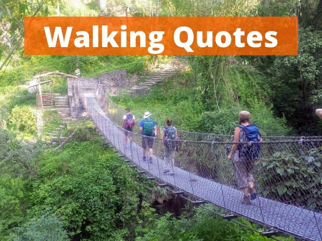 A collection of the 50 best walking quotes
