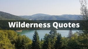 Famous Wilderness Quotes Collection