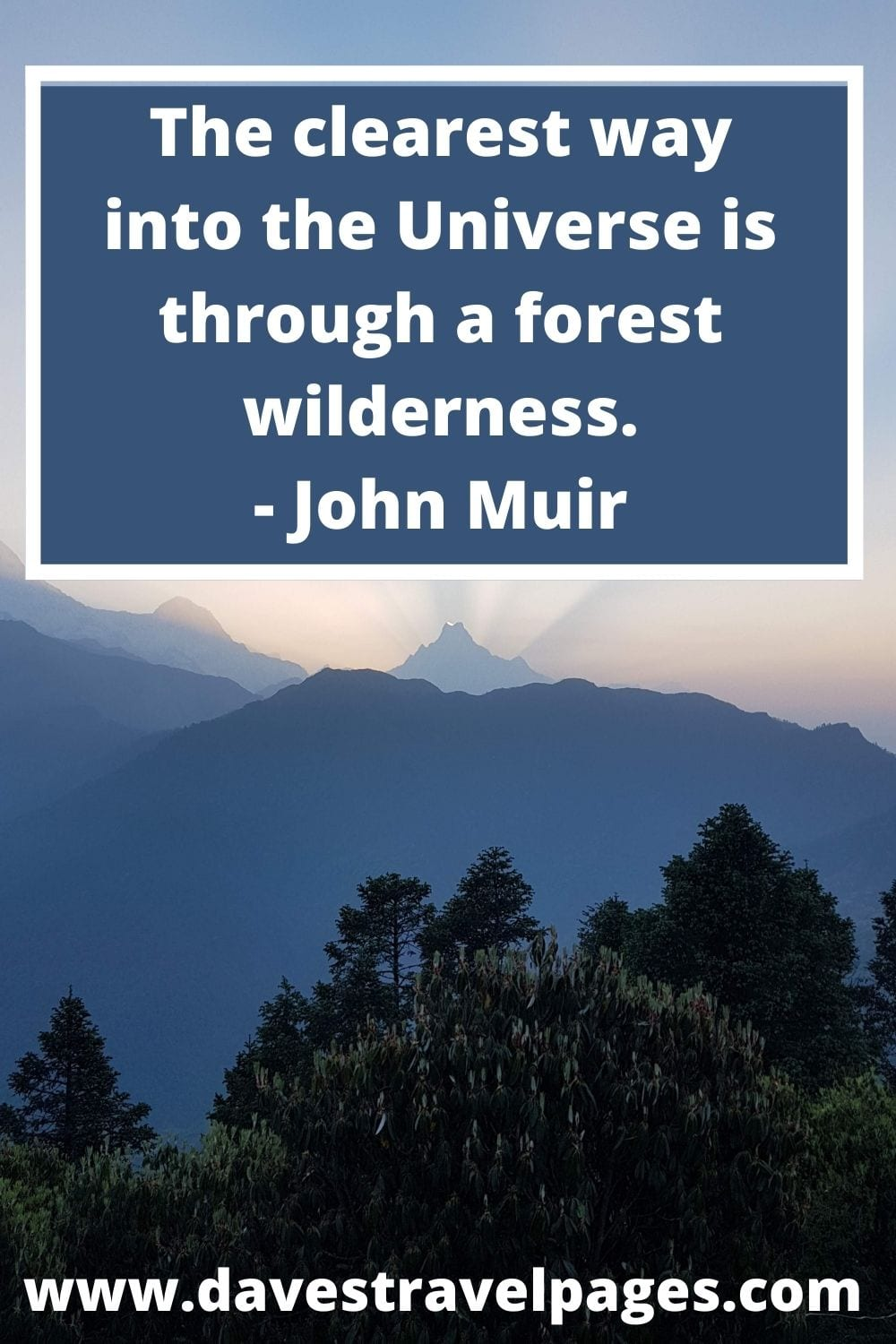 The clearest way into the Universe is through a forest wilderness. - John Muir
