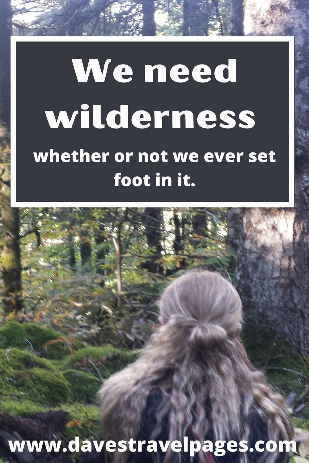 We need wilderness whether or not we ever set foot in it - Quote
