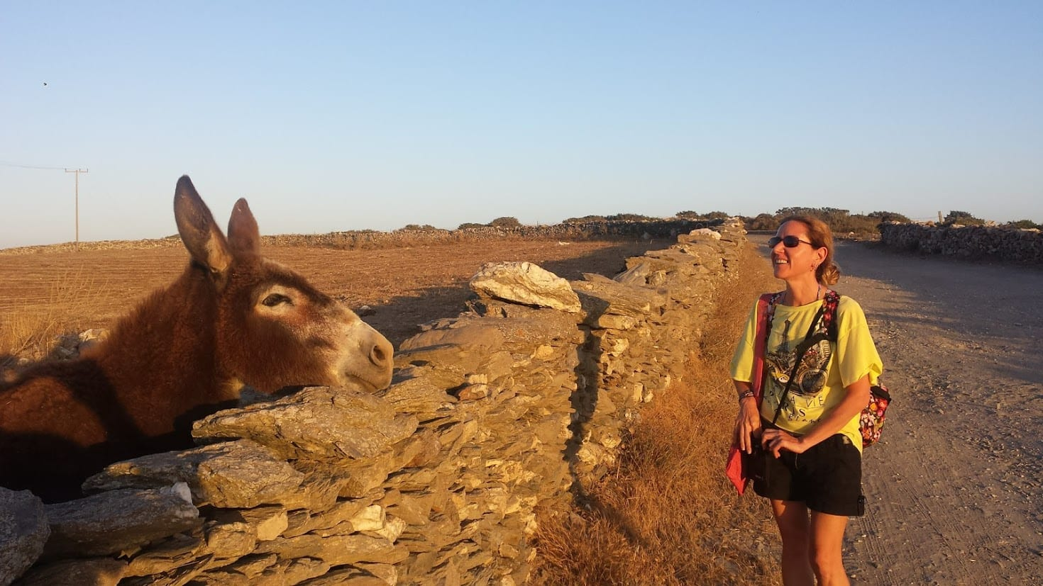 Making friends with a donkey in Schinoussa Greece