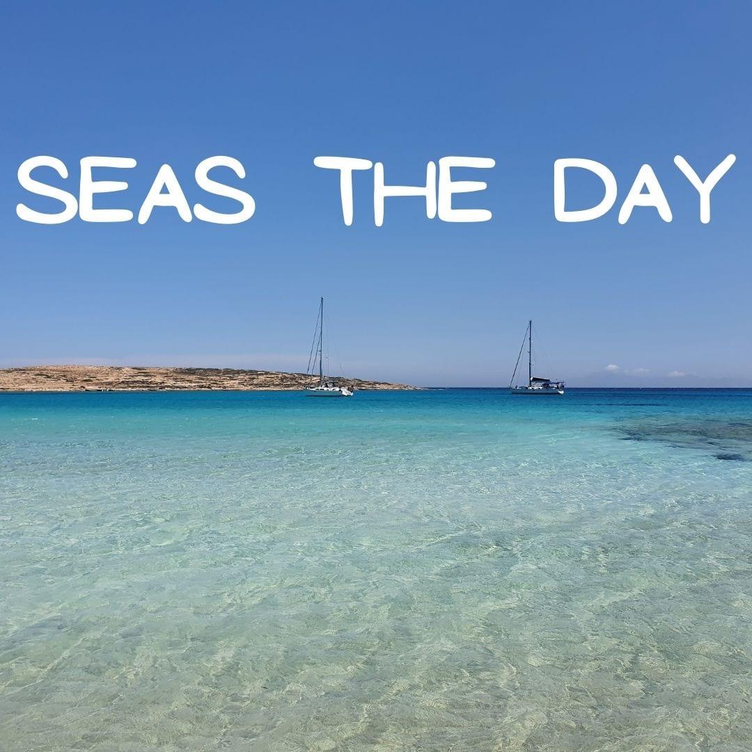 """Seas the day."""