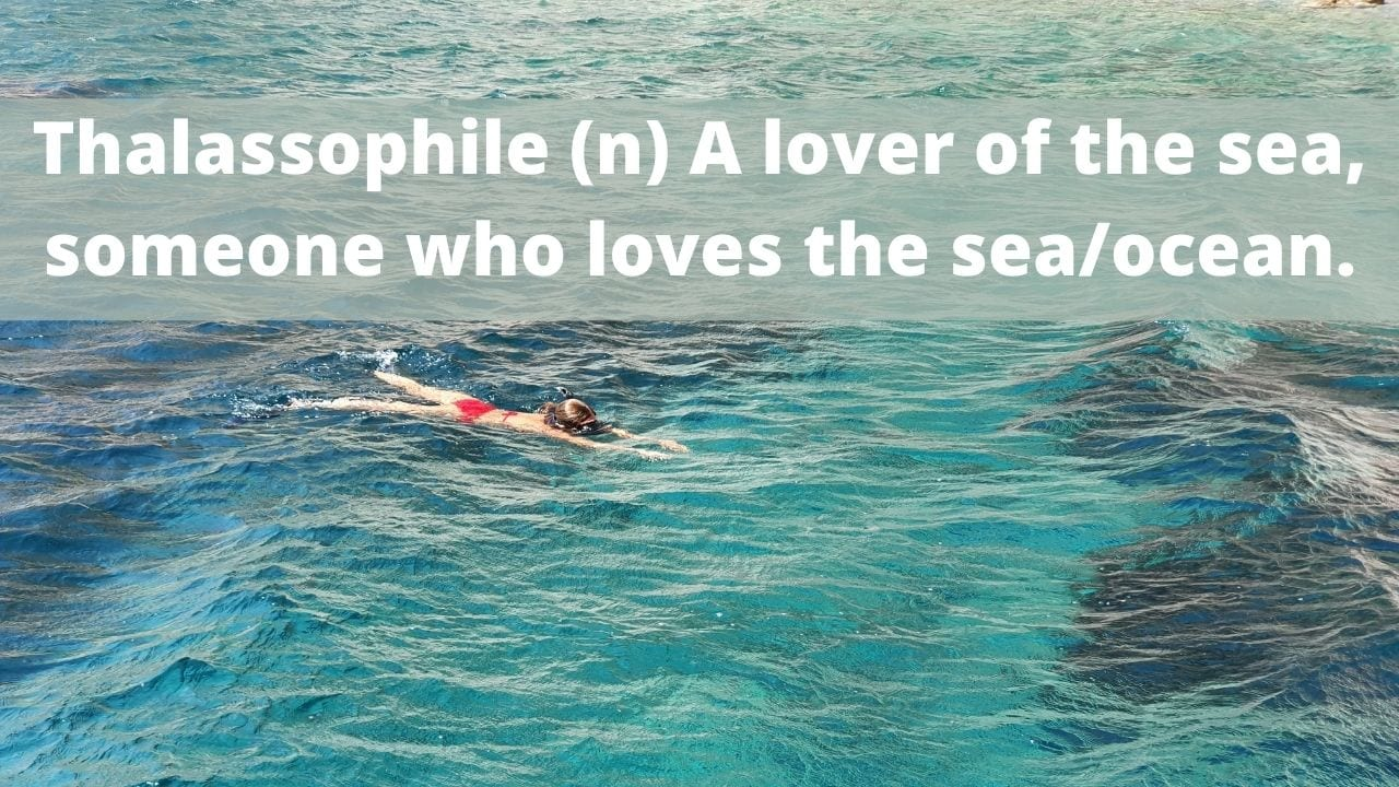 Thalassophile (n) A lover of the sea, someone who loves the sea/ocean.