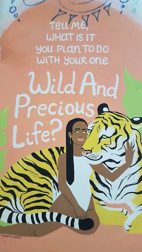 What to do with your wild and precious life